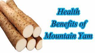 Health Benefits of Mountain Yam.