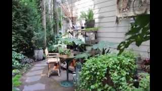 Тенистый сад (38 фото): особенности растений, садовых цветов для затененных мест, фото и видео