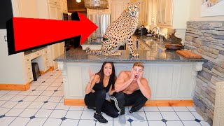 LAST TO LEAVE THE HOUSE WITH A CHEETAH WINS $10,000!