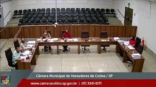 Câmara Municipal de Colina - 8ª Sessão Extraordinária 29/07/2020