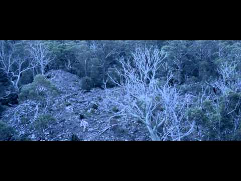 Russell Morris - Van Diemen's Land (OFFICIAL VIDEO)