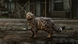 Playing as a CAT in Red Dead Redemption 2 pc 60 fps