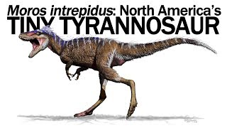 Moros intrepidus: North America's Tiny Tyrannosaur