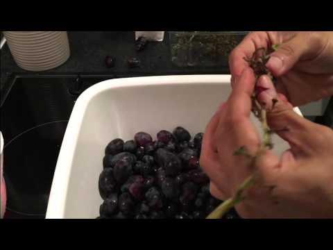How To Make Shiraz Wine At Home - 6 آموزش درست کردن شراب شیراز