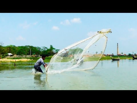 Cast Net Fishing at the River with beautiful natural | River Fishing by Daily Village Life (Part-03)