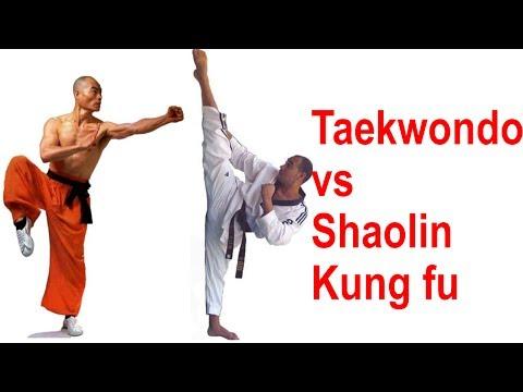 Taekwondo Olympic Gold Medalist vs Shaolin Monk
