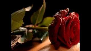 Arabian Daze - (Oriental Mix)