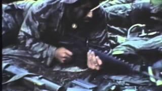 Der Vietnamkrieg Apokalypse im Dschungel (1954-1965)