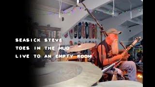 Seasick Steve - Toes in the Mud (Live)