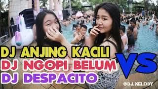 Download lagu Jangan Kasih Ampun DJ Anjing Kacili vs Udah Pada Ngopi Belum Vs Despacito Remix Enak Sedunia 2018