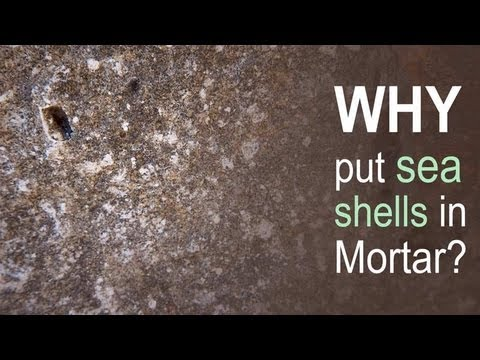 Why put sea shells in Mortar?