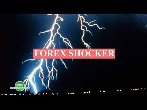 Forex Shocker - ваш новый портфельный советник