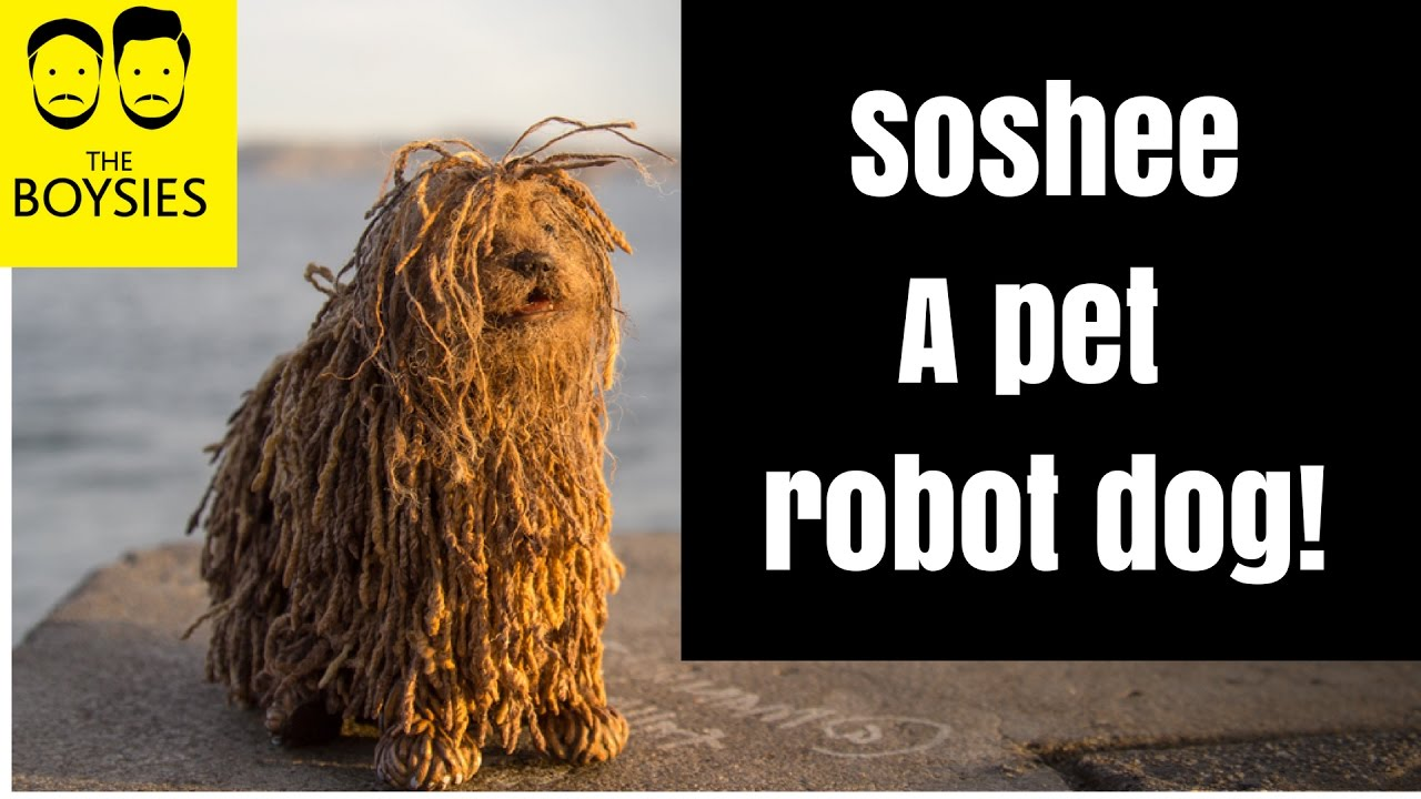Soshee