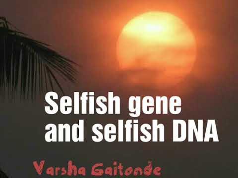 Selfish DNA And Selfish Genes