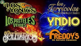 VIEJITAS PERO BONITAS Yndio, Los Terrícolas, Los Angeles Negros,Los Pasteles Verdes,Los Strwck y más