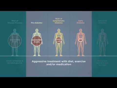 Beta Cells in Type 2 Diabetes