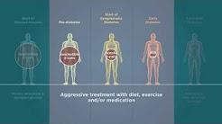 hqdefault - Mechanisms Of Pancreatic Beta Cell Destruction In Type I Diabetes