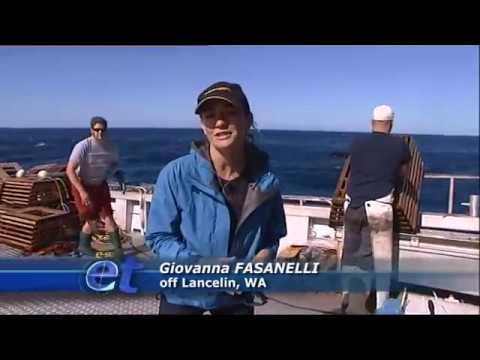 Escape Fishing With ET, By-Catch Reduction Devices, Series 11 Episode 8 Clip