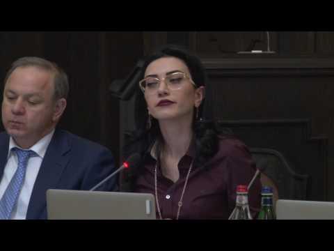 Արփինե Հովհաննիսյանը կառավարությանը ներկայացրեց մի քանի նախա....