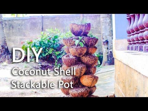 DIY Coconut Shell Stackable Pot