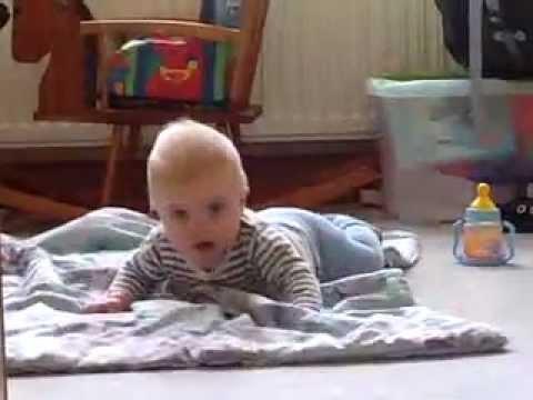 Wann robben babys