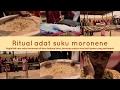 Dokumenter Film - Cara Bersyukur Suku Moronene di Desa Hukaea Laiea