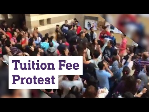 Egypt students protest tuition fee hike