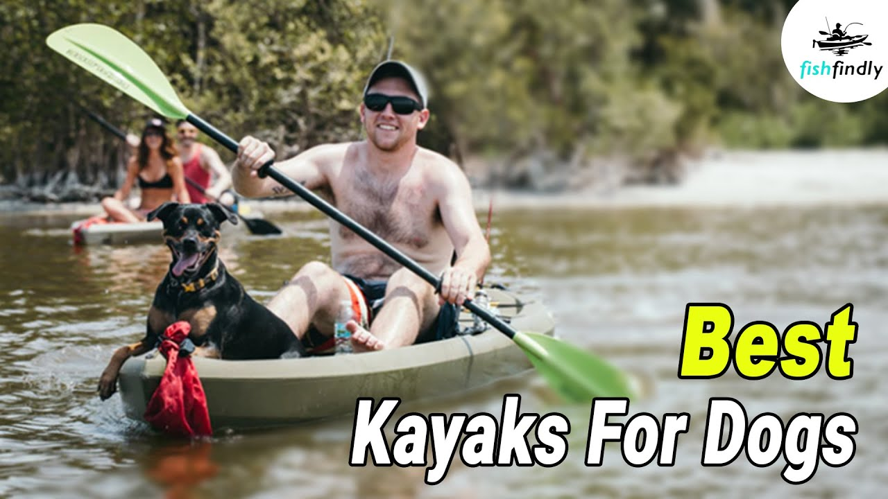 10 Best Kayaks For Dogs In 2019