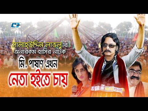 Mr. Pashan Ekhon Neta Hote Chay   Bangla Natok   Salauddin Lavlu   Arpona