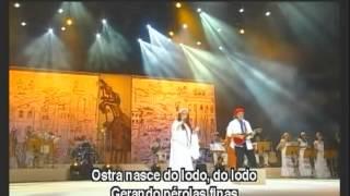 BETH CARVALHO CANTA O SAMBA DA BAHIA-DVD COMPLETO - 2007