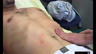 Gastro - Palpation Rate