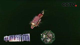 [中国新闻] 龙舟竞渡 粽叶飘香 中国各地共度端午 | CCTV中文国际