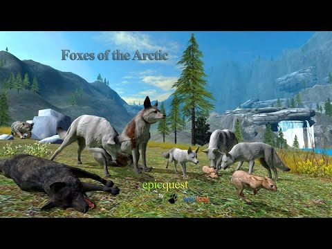 "Foxes of the Arctic -""The Movie""- Wild Foot Games Simulation - iTunes/Android"