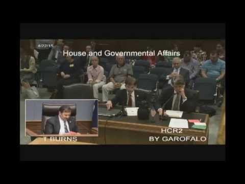 Michael Farris Testimony before Louisiana House Committee