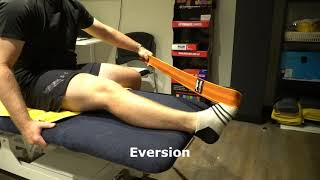 Banded Concentric Ankle Exercises