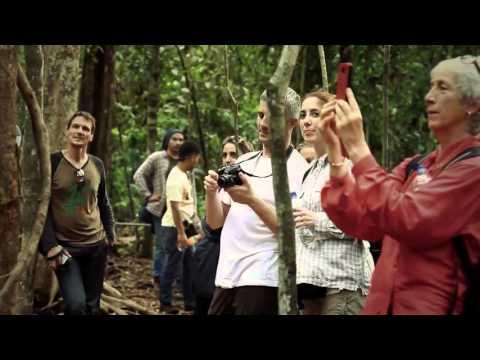Exotic Eco Tourism of Indonesia