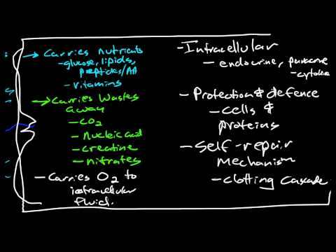 Introduction to the Hematologic System