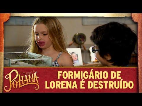 Formigário de Lorena é destruído   As Aventuras de Poliana