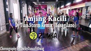 Anjing Kacili Remix  By Tian Storm (Bassgilano) (Choreography) | At BFS Studio (Zumba)