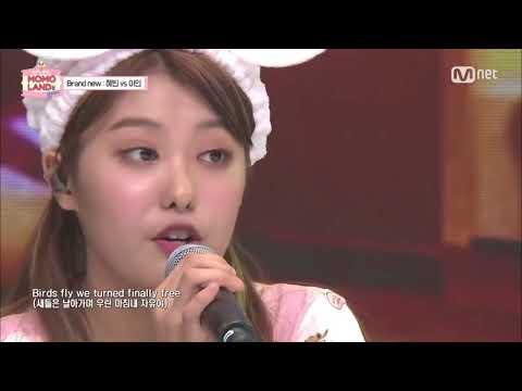 AHIN MOMOLAND Cùng Giọng Hát Tuyệt Vời!   AHIN With Beautiful Voice