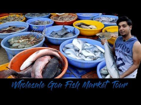 Goa की Wholesale Fish Market में मछली किस भाव मिलती है @ Guru Musafir