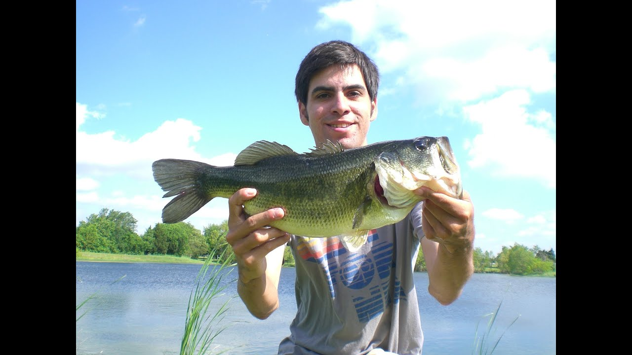 Bed fishing the spawn hat cam bass youtube for Bed fishing for bass