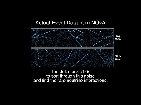 Detecting Neutrinos with the NOvA Detector