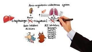 pharmacology hypertension antihypertensives made easy