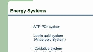 Exercise Physiology Lecture  Part 1