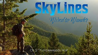 Wired to Wander Ch 2 Tumbleweeds Roll
