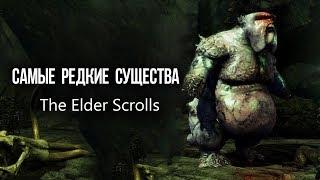 САМЫЕ РЕДКИЕ СУЩЕСТВА The Elder Scrolls которых не было в Skyrim