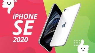 iPhone SE 2020: 5 motivos para COMPRAR e NÃO comprar