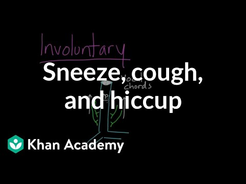 Sneeze, cough, and hiccup | Respiratory system physiology | NCLEX-RN | Khan Academy