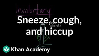 Sneeze, Cough, and Hiccup
